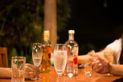 Grupp av vänner som tycker om som dricker ett exponeringsglas av champagne och whis arkivbild