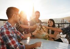 Grupp av vänner som tycker om partiet med drinkar Royaltyfri Fotografi