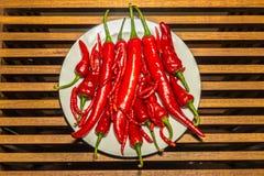 Grupp av varma kryddiga chilipeppar Royaltyfria Foton