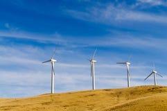 Grupp av vind drev generatorer Fotografering för Bildbyråer