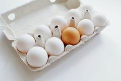 Grupp av vita ägg och bland dem som är bruna i låda på vit bakgrund Minsta stil Det symboliska begreppet - stå ut från folkmassan royaltyfri bild