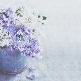 Grupp av vita och purpurfärgade lila blommor i metalltappninghink Royaltyfri Bild
