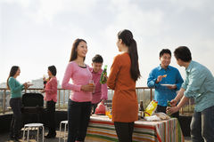 Grupp av vänner som har en grillfest på ett tak Royaltyfri Fotografi