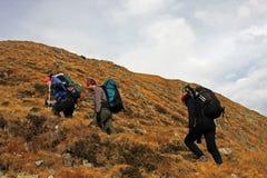 Grupp av vänner som trekking på berget Arkivfoto
