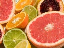 grupp för 3 citrus Royaltyfri Foto