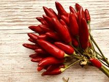 Grupp för peppar för röd chili arkivfoto
