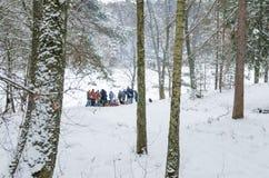 Grupp människor i skog royaltyfria bilder