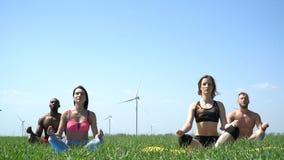 Grupp människor som gör yoga på en grön äng lager videofilmer
