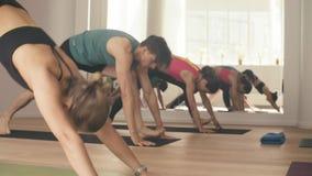Grupp människor som gör yogaasanas i studio