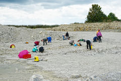 Grupp människor som söker för ammonitfossil i kalksten Royaltyfria Bilder