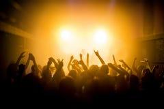 Grupp människor som tycker om en konsert arkivbild