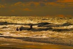 Grupp människorbadning på det baltiska havet under solnedgång Arkivfoton