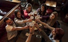 Grupp m?nniskor som firar i en bar som dricker ?l royaltyfria bilder