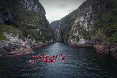 Grupp som kayaking i flodkanjon i Knysna, Sydafrika royaltyfri foto
