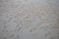 Gruppe Abdrücke auf dem Sandstrand Stockfotos