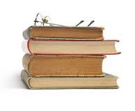 Gruppe alte Bücher und Gläser Lizenzfreie Stockfotografie