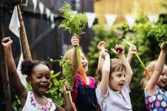 Gruppe angehobenen Glücklächelns der Kinderschulfreunde des Hand lernen lizenzfreie stockfotografie