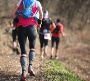 Gruppe Athleten, die das Landrennen im Gebirgspfad laufen lassen lizenzfreie stockfotos