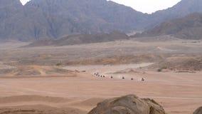 Gruppe auf Viererkabel-Fahrrad-Fahrten durch die Wüste in Ägypten auf Hintergrund von Bergen Fahren von ATVs stock video footage