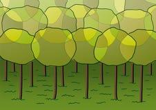 Gruppe Bäume Stockfotos