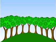 Gruppe Bäume Lizenzfreie Stockfotos