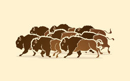 Gruppe Büffelbetrieb Lizenzfreie Stockfotografie