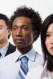 Gruppe Büroangestellte Stockbild