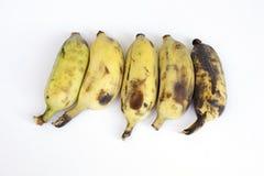 Gruppe Bananen lokalisiert auf weißem Hintergrund Lizenzfreies Stockfoto