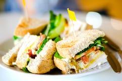 Gruppe Club Sandwiche Lizenzfreie Stockfotos