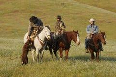 Gruppe Cowboys mit Hund Lizenzfreie Stockfotografie