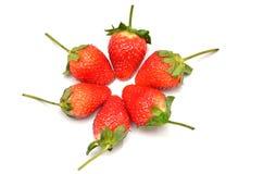 Gruppe der Erdbeere lizenzfreie stockbilder