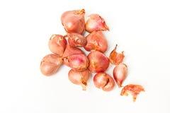 Gruppe der kleinen roten Zwiebel. Lizenzfreies Stockfoto