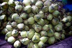Gruppe der Kokosnuss auf einem Boden für Verkauf Stockfotografie