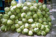 Gruppe der Kokosnuss auf einem Boden für Verkauf Stockbilder