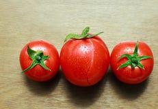 Gruppe der natürlichen frischen Tomate mit Tropfen des Taus Lizenzfreie Stockbilder