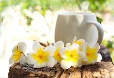 Gruppe der schönen Plumeriablume und der Kaffeetasse auf altem trockenem Tim Lizenzfreies Stockfoto