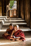 Gruppe des birmanischen jungen Mönchlesebuches im Tempel Stockfotos