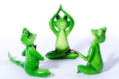 Gruppe des grünen Frosches stellt das Ausdehnen und das Handeln von Yogaübungen dar Stockfotografie