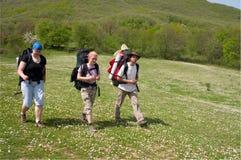 Gruppe des Touristen Stockbilder