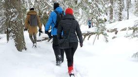 Gruppe des Touristen gehend in Winterberge stock video footage