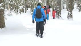 Gruppe des Touristen wandernd in den Winterbergen stock footage