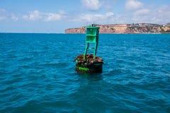Gruppe Dichtungen einschließlich zwei Babys schlafen auf einer grünen Boje im Ozean weg der Kalifornien-Küste lizenzfreie stockfotografie