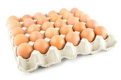 Gruppe Eier Stockfotografie