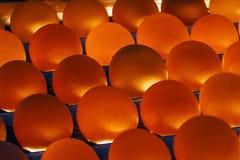 Gruppe Eier von unterhalb belichtet Lizenzfreies Stockbild