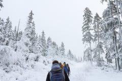 Gruppe einiger Leute auf Winter wandern in den Bergen, die Wanderer, die auf schneebedeckten Wald gehen Lizenzfreies Stockfoto