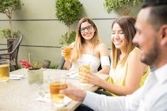 Gruppe Freunde, die Bier trinken Lizenzfreie Stockfotos