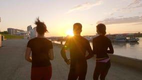 Gruppe Freunde, die den Spaß entlang zusammen läuft haben stock video footage