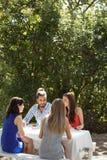 Gruppe Freunde, die zu Mittag essen Stockfotografie