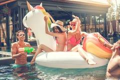 Gruppe Freunde zusammen in der Swimmingpoolfreizeit Stockbilder