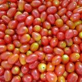 Gruppe frische rote Kirschtomaten Lizenzfreie Stockfotos